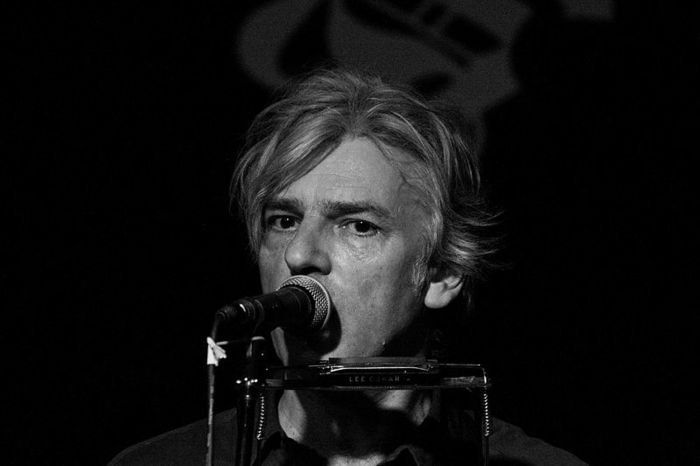 Robyn Hitchcock Parking